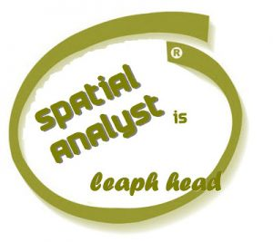 Spatial analysys is the next leap ahead