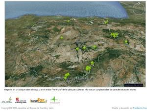 mapa de bosques huerfanos